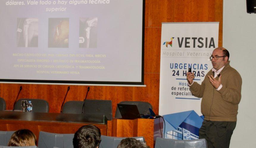 Ignacio Calvo, Diplomado Europeo en Cirugía, nuevo responsable del equipo de Cirugía, Traumatología y Ortopedia de VETSIA Hospital Veterinario